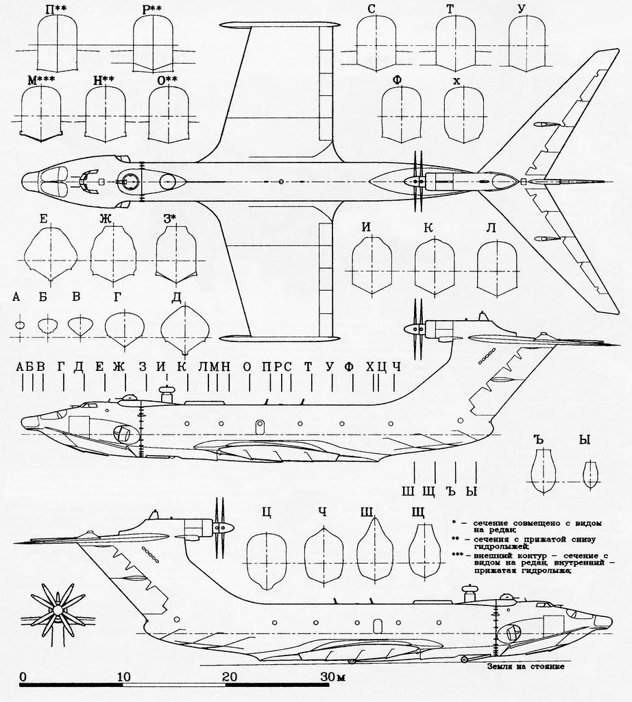 空中飞行动物简笔画