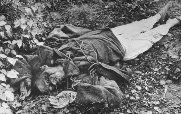 苏联红军在德国_苏联红军在德国和东欧惨绝人寰的恐怖兽行