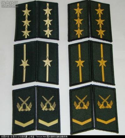 右为此前的武警领章-全国武警07作训服改款式 取消肩章和织唛领花图片